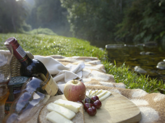 Picnic by secluded Forest Stream.jpg